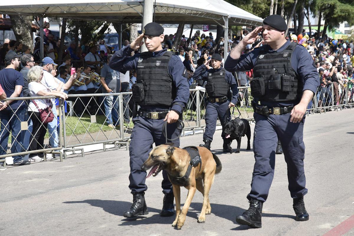 Cães são atração nos 70 anos da Guarda Municipal